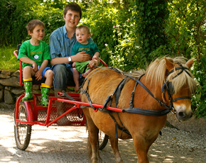 pony and trap rides at higher lank farm, toddler-friendly holidays in cornwall, uk
