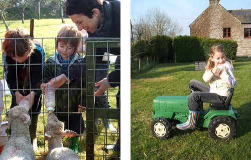 fun at higher lank farm toddler holidays, bodmin