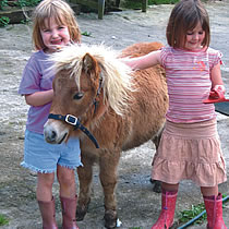 toddler holidays - meet the ponies