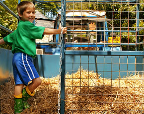higher lank farm family-friendly holidays in cornwall - welcome tractor and trailer tour