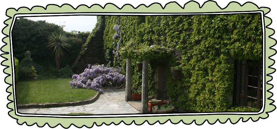wisteria in bloom at higher lank farm family friendly holidays uk