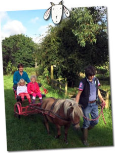 pony and trap ride twin and toddler friendly farm holidays uk